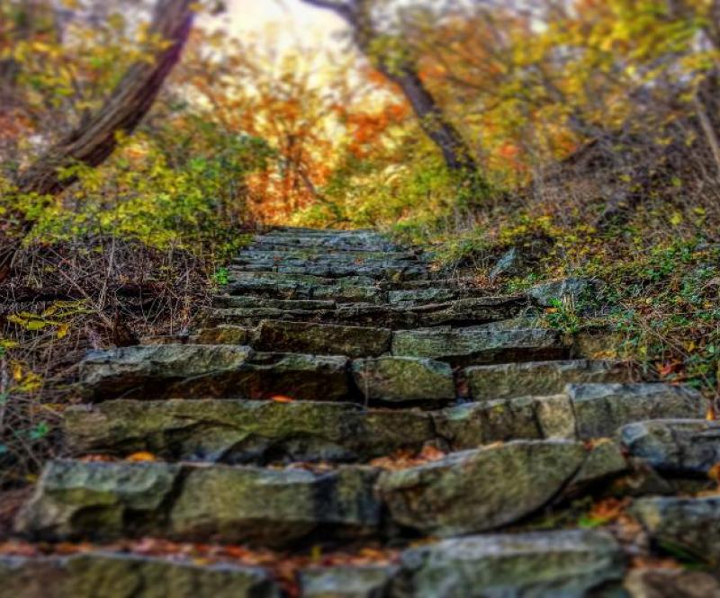 Stairway to the sky - Photo Tom Demarco