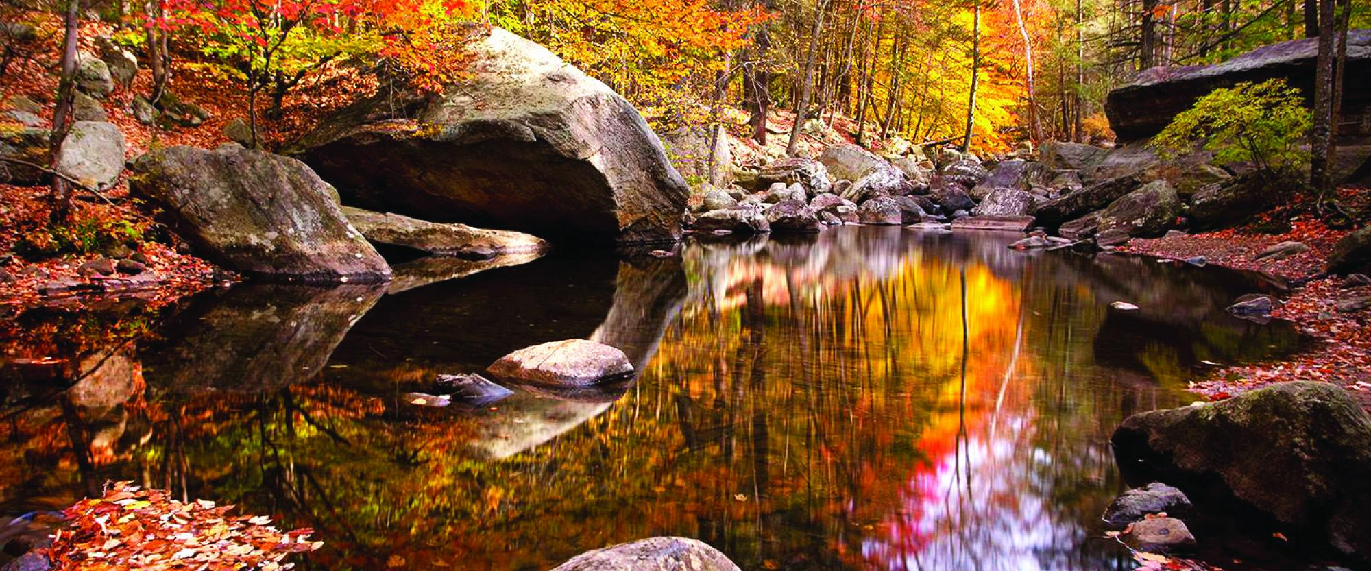 Harriman-Bear Mountain in the fall. Photo by Susan Magnano.