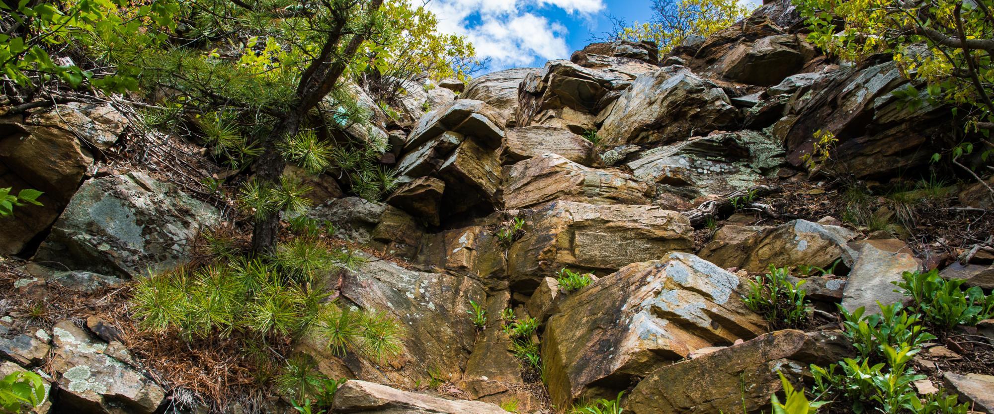 Schunemunk Mountain. Photo by Steve Aaron.