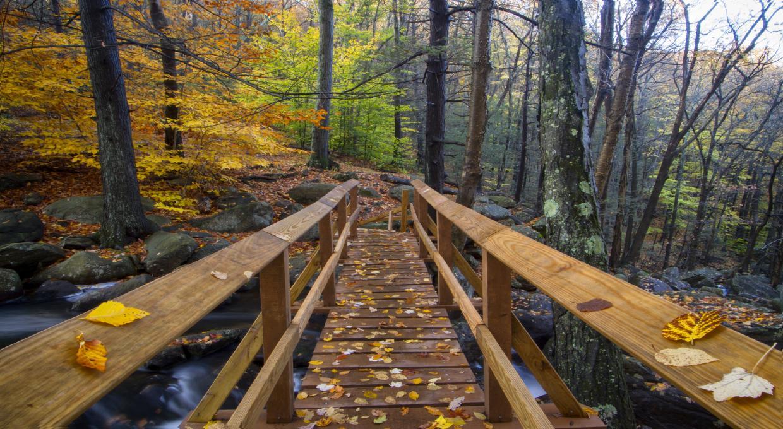 Bridge Walk Over Stony Brook, Harriman State Park - Photo Mike Malandra