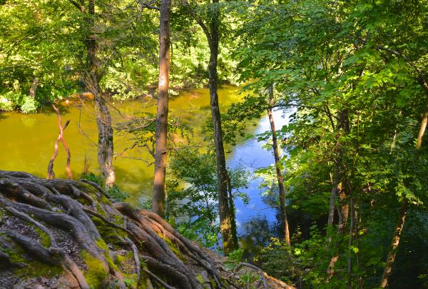 Trail Conference Stewards will be stationed at Croton River Unique Area to help visitors and protect the ecosystem.